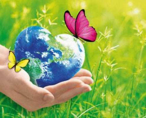 Welt in Herz und Hand