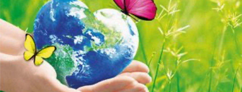 Recycelte PE-Folien als nachhaltige Materiallösungen